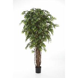 Fleur.nl - French Ficus Liana - kunstplant