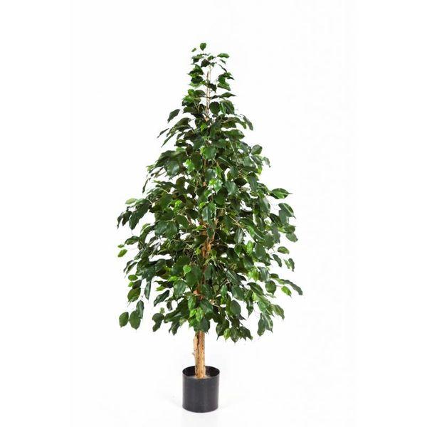 Natural Exotica - kunstplant