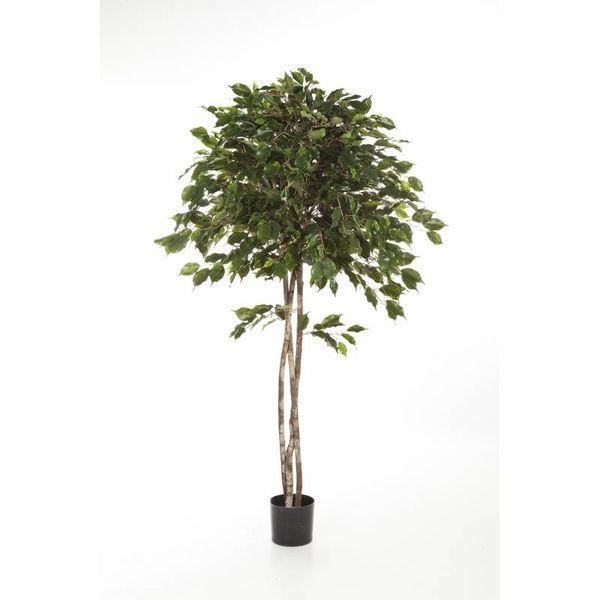 Ficus Exotica Umbrella - kunstplant