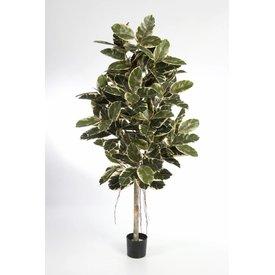 Fleur.nl - Ficus Elastica var. - kunstplant