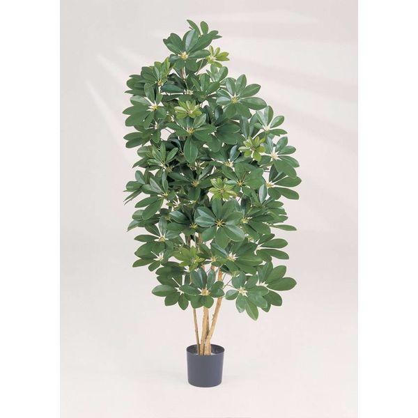 Natural Schefflera - kunstplant