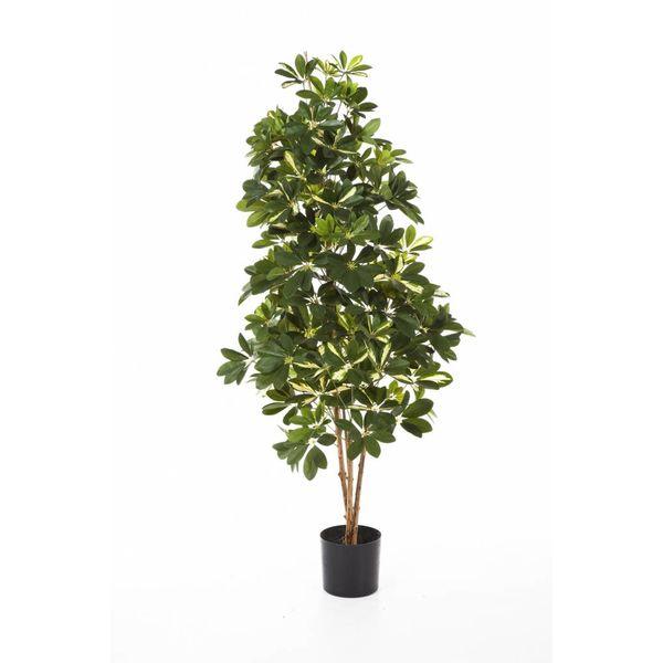 Natural Schefflera var. - kunstplant