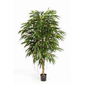 Fleur.nl - Longifolia Royal Tree - kunstplant