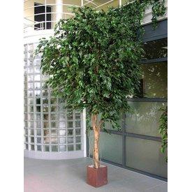 Fleur.nl - Giant Ficus Exotica - kunstplant