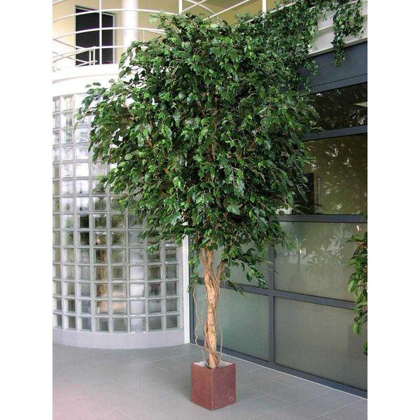 Giant Ficus Exotica - kunstplant