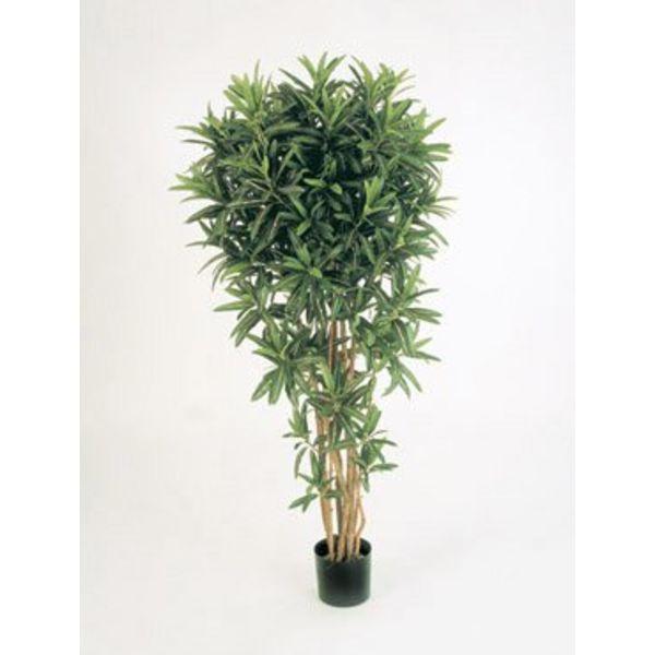 Croton Goldfinger Reflexa - kunstplant