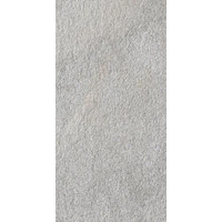 vloertegel AMAZZONIA Dragon Grey 30x60 cm Rett. - 9,4 mm Nat.