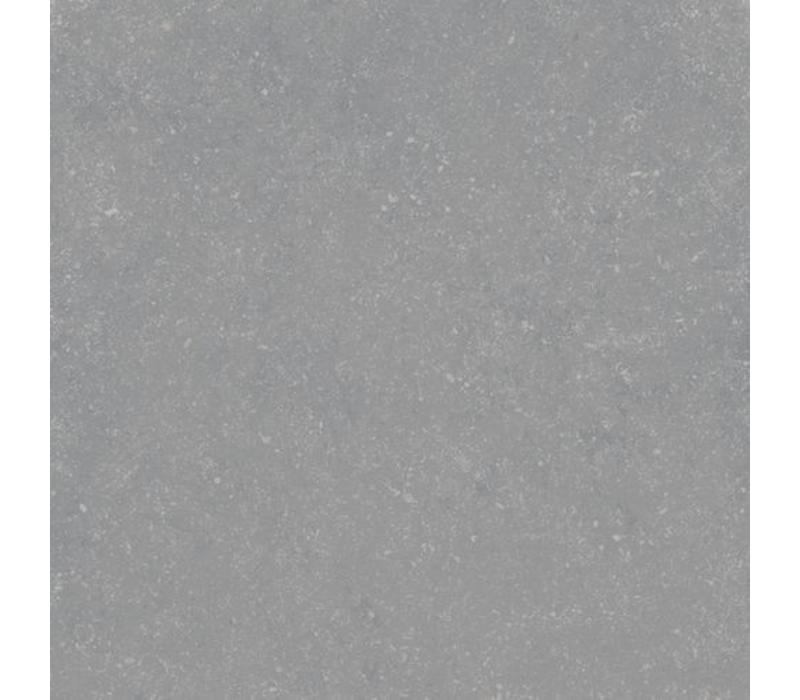 vloertegel PETIT GRANIT Gris Natural 60x60 cm