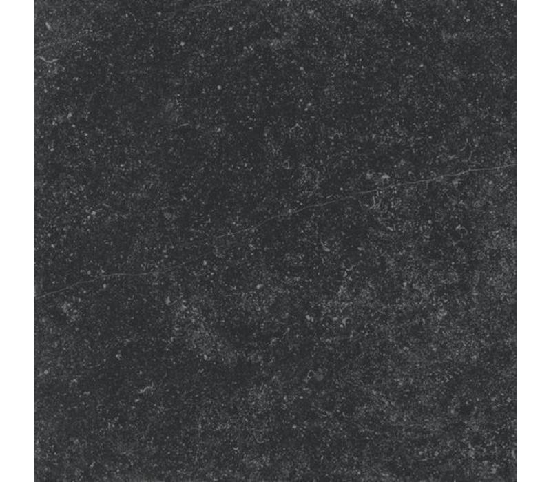 vloertegel PETIT GRANIT Negro Natural 60x60 cm