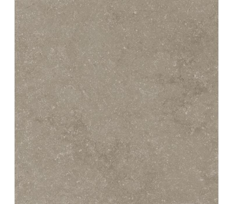 vloertegel PETIT GRANIT Vision Natural 60x60 cm