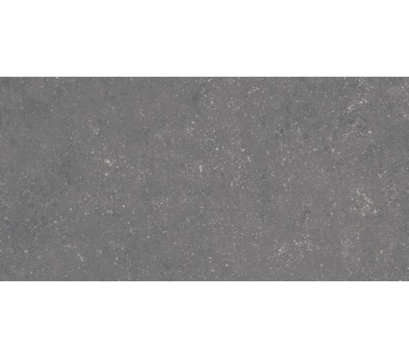 vloertegel PETIT GRANIT Grafito Natural 30X60 cm
