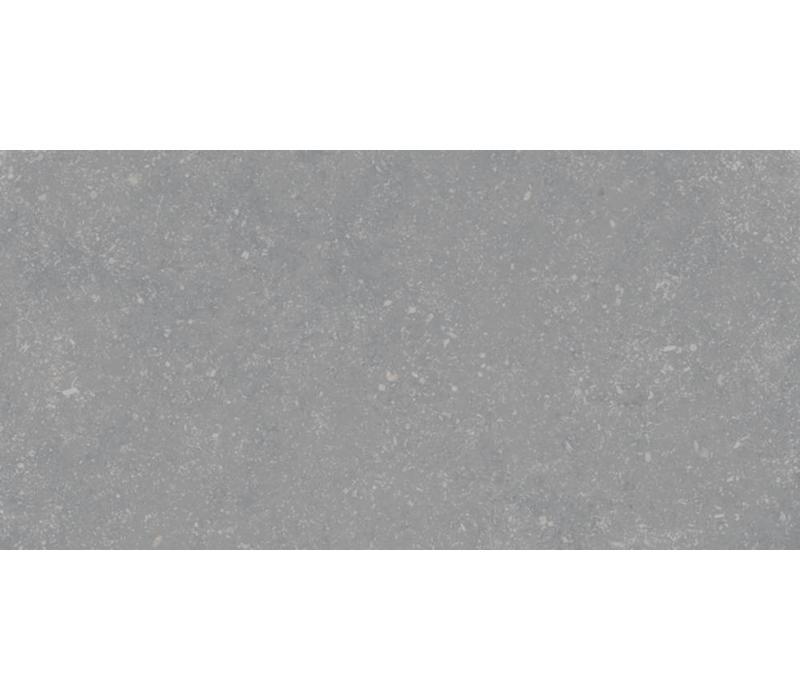 vloertegel PETIT GRANIT Gris Natural 30X60 cm