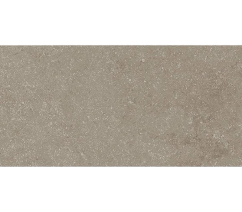vloertegel PETIT GRANIT Vision Natural 30X60 cm