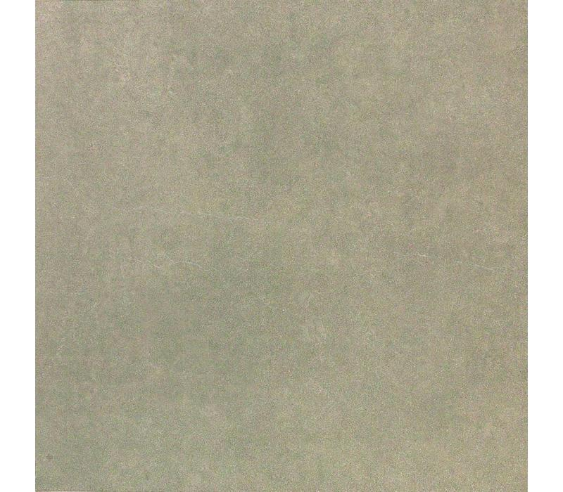 vloertegel HOMESTONE Gris 60x60 cm