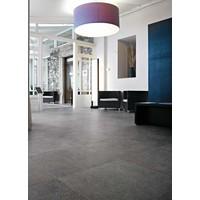 vloertegel PIETRA DEL NORD Grigio 60x60 cm - Antique matte