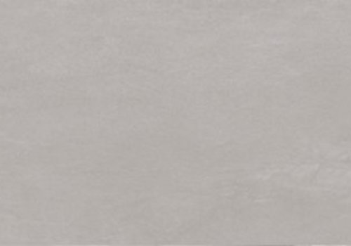Ergon vloertegel STONE TALK Minimal Grey 30x60 cm rett. - Naturale