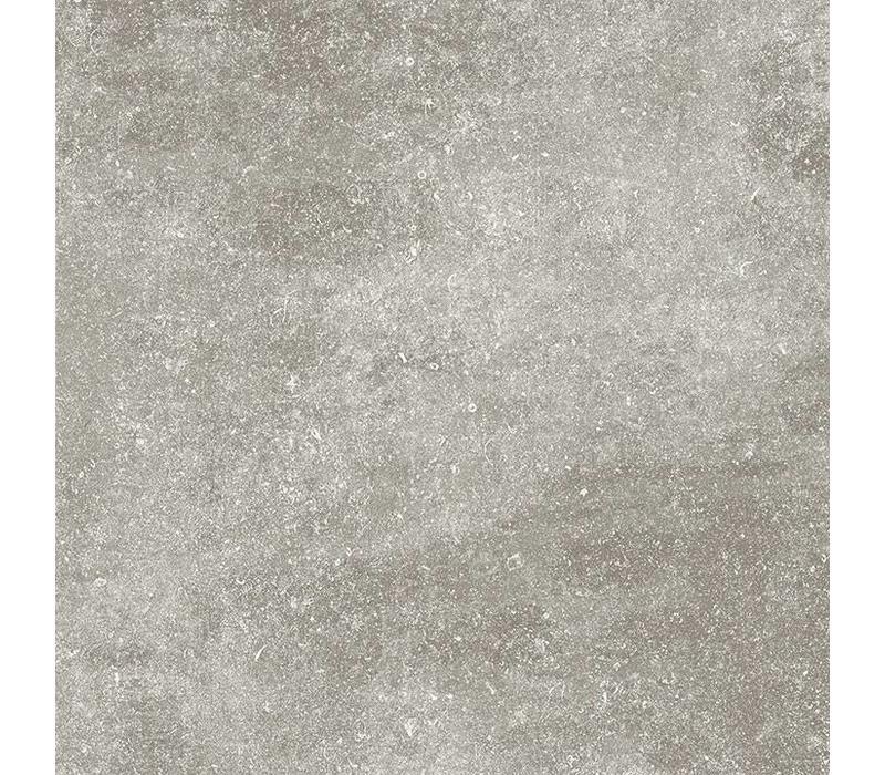 vloertegel KINGSTONE Platinum 80x80 cm
