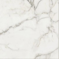 vloertegel ELEMENTS LUX Calacatta 60x60 cm Naturale