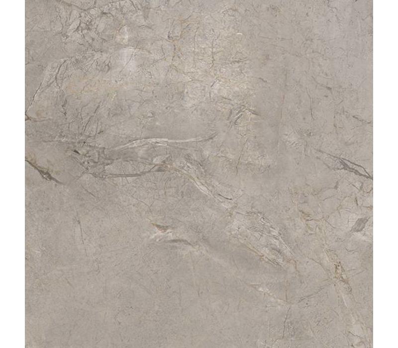vloertegel ELEMENTS LUX Silver Grey 60x60 cm Naturale