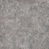 vloertegel ELEMENTS LUX Grigio Imperiale 60x60 cm Naturale