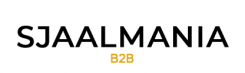 De B2B Shop van SjaalMania