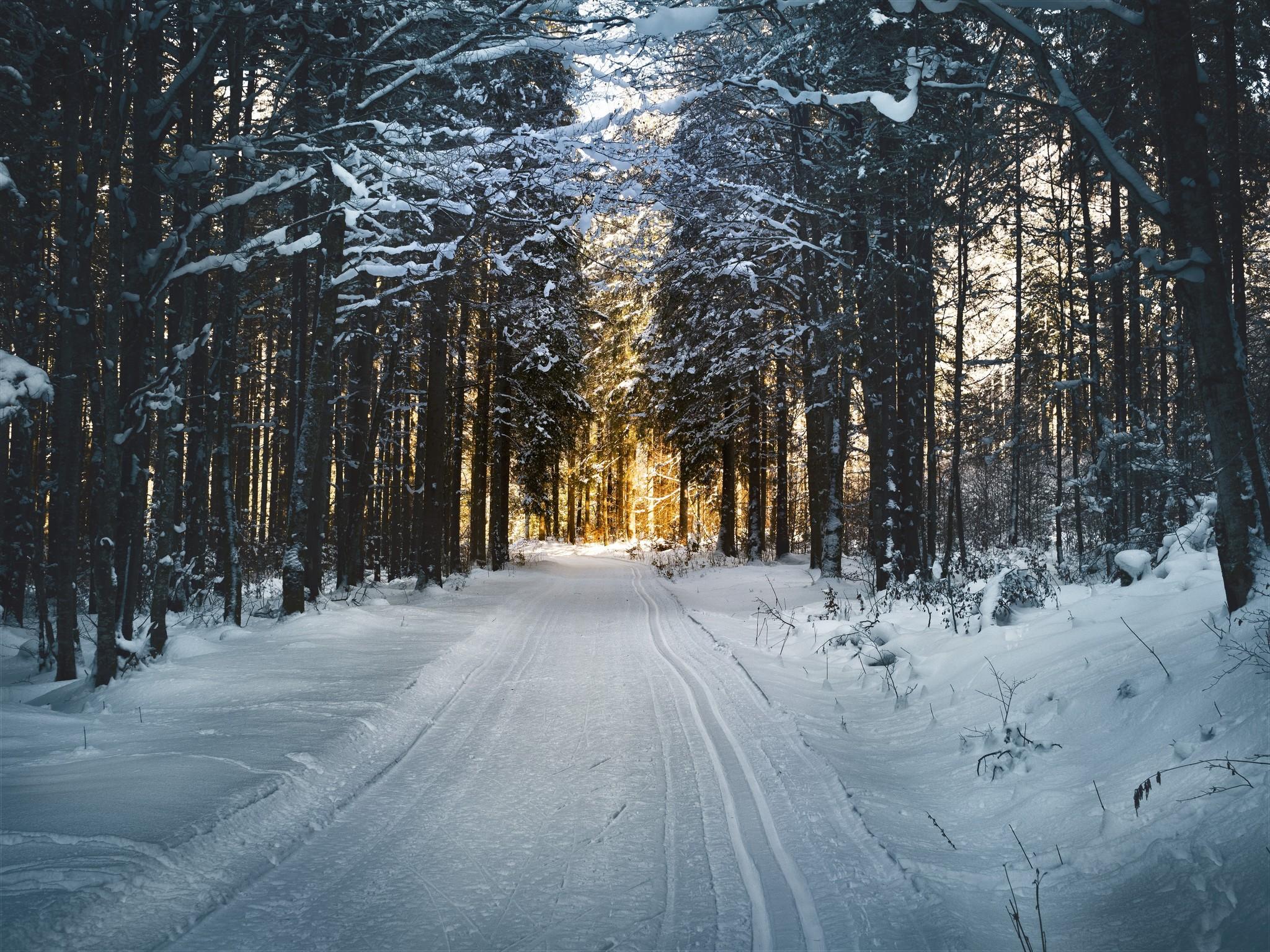 Hoe overleef je de winterdip?