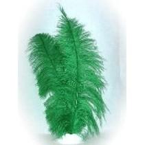 Veer spadonis groen