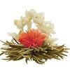10 theebloemen Spring White + bewaarzak