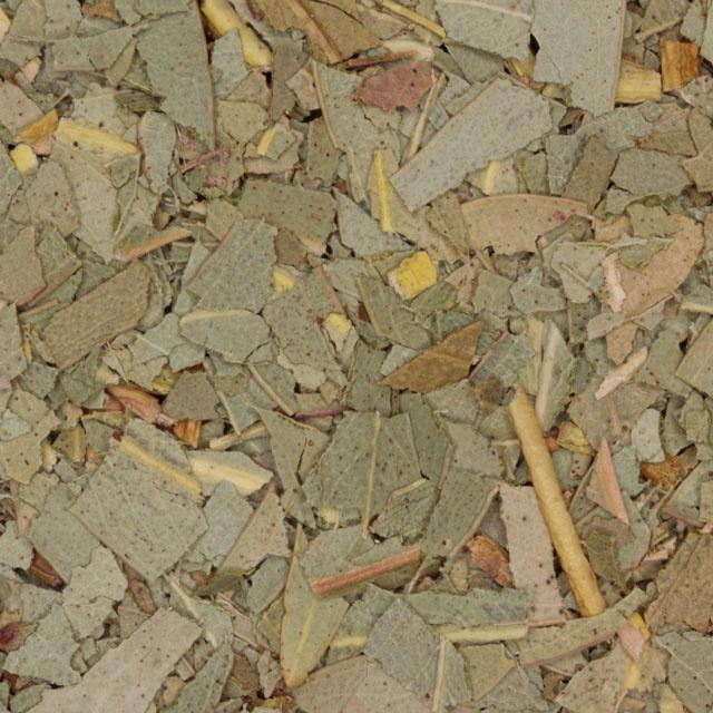 Kruiden thee Eucalyptus