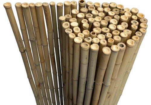 Bamboemat op de rol - NATUREL