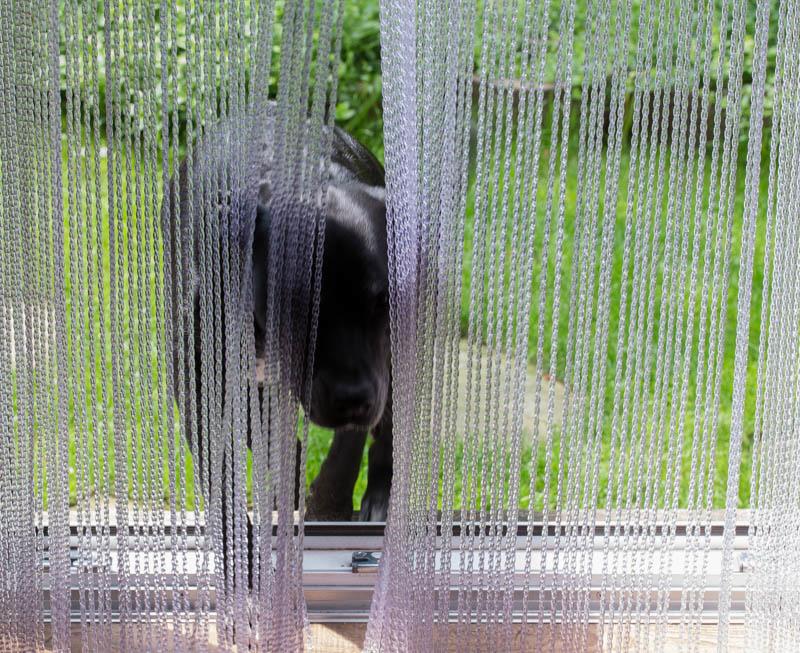 Vliegengordijn transparant spaghetti slierten pvc