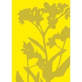 illi Blumenschatten Gelb