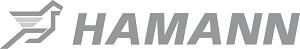 Hamann carbon onderdelen / velgen