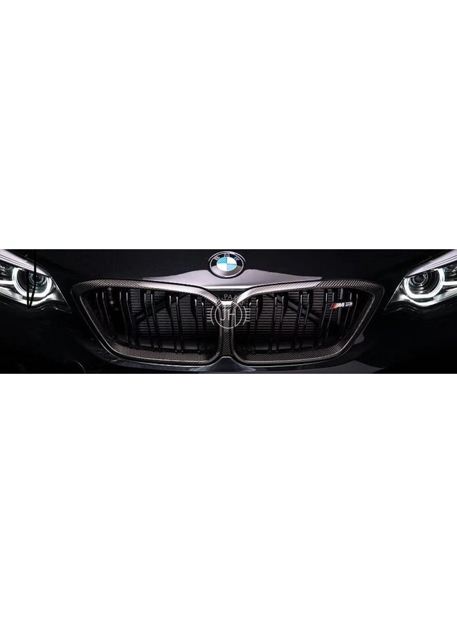 Carbon grill BMW F87 M2 Competition
