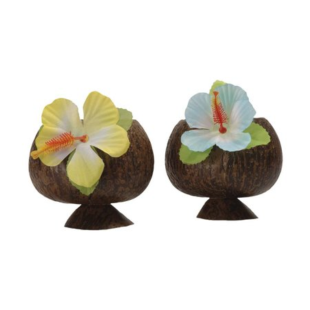 Coconut Hawaii cup