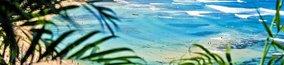 Geef met Baywatch kleding en Hawaii kransen de beste zomer party!