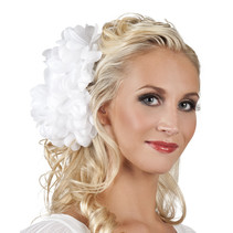 Haarbloem Dahlia wit