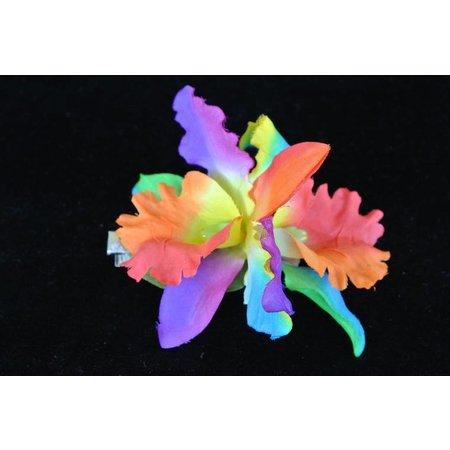 Haarbloemen Orchidee Multi