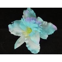 Haarbloem Orchidee Blauw