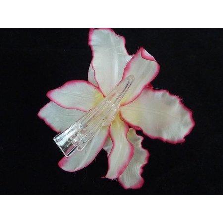 Haarbloem Orchidee Wit/Roze