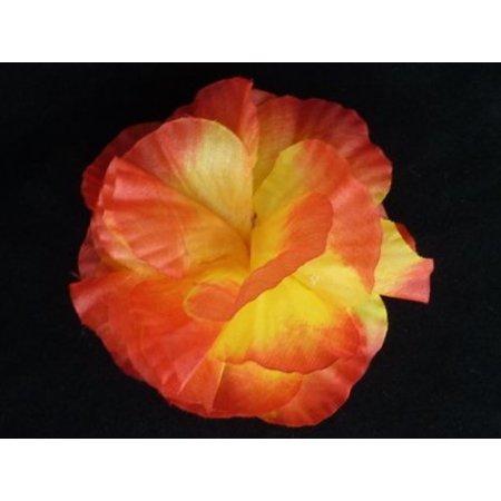 Hawaii bloem op kam Oranje/Geel