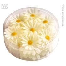 Decoratie Magrietjes bloemen
