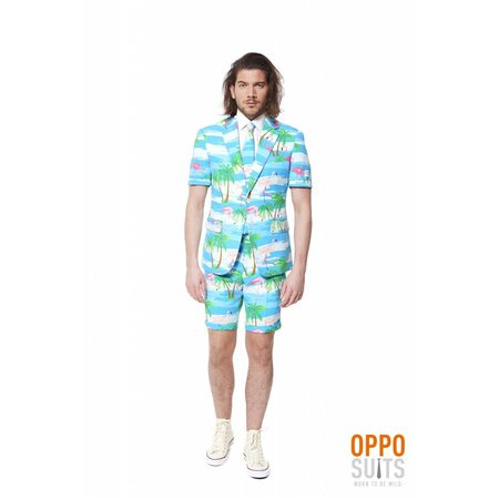 Summer Flamingo suit