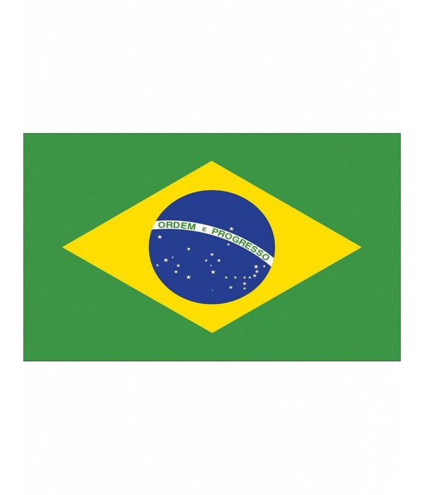 Braziliaanse vlag 90x150cm