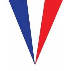 Vlaggenlijn Frankrijk 5 meter 10 vlaggen