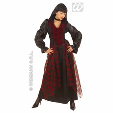 Victoriaanse Dames Vampier Royal Lady Kostuum