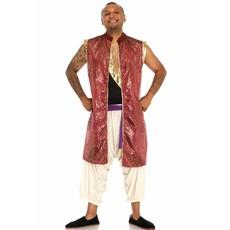 Prince Ali kostuum elite