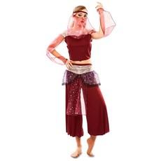 Arabische 1001 nacht danseres kostuum