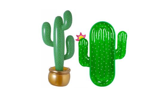 Opblaas cactus