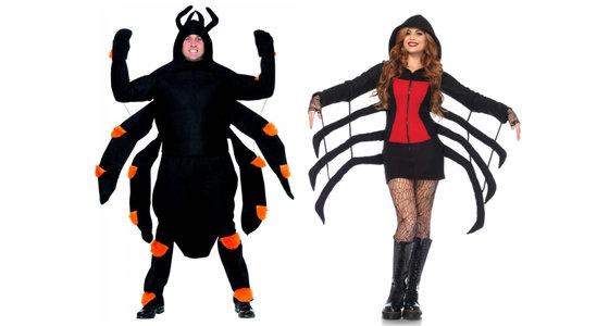 Spinnenpak